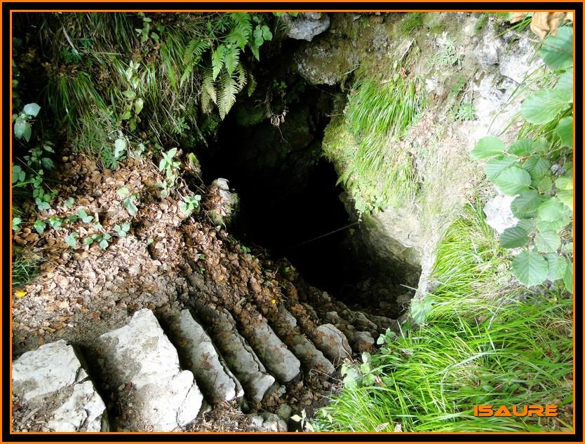 Bosque de Artea y Cueva de los Cristinos (Urbasa) DSC02633