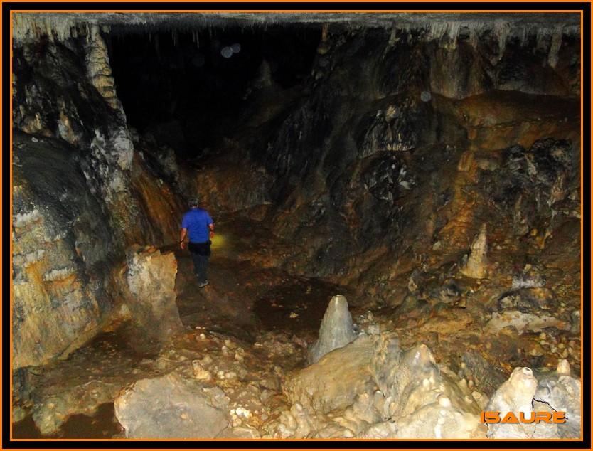 Bosque de Artea y Cueva de los Cristinos (Urbasa) DSC02655