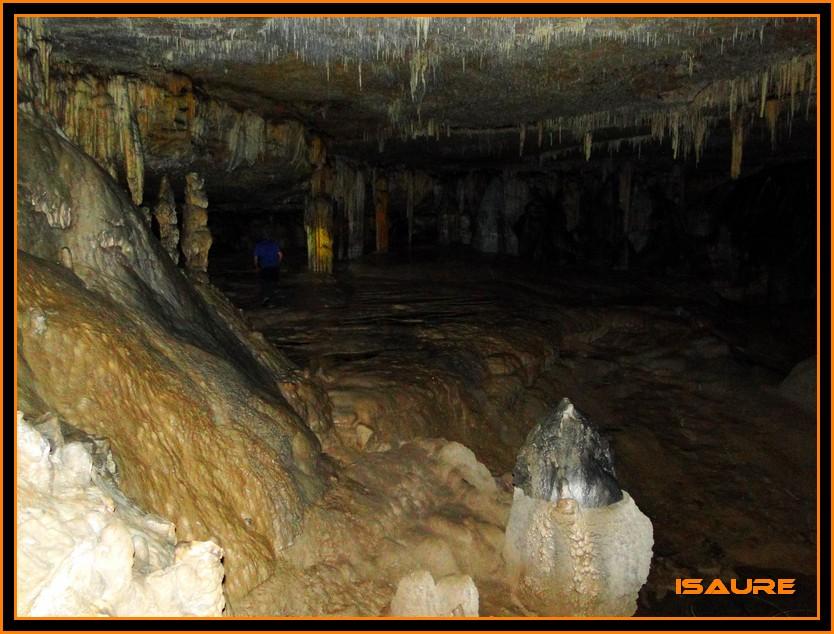 Bosque de Artea y Cueva de los Cristinos (Urbasa) DSC02663