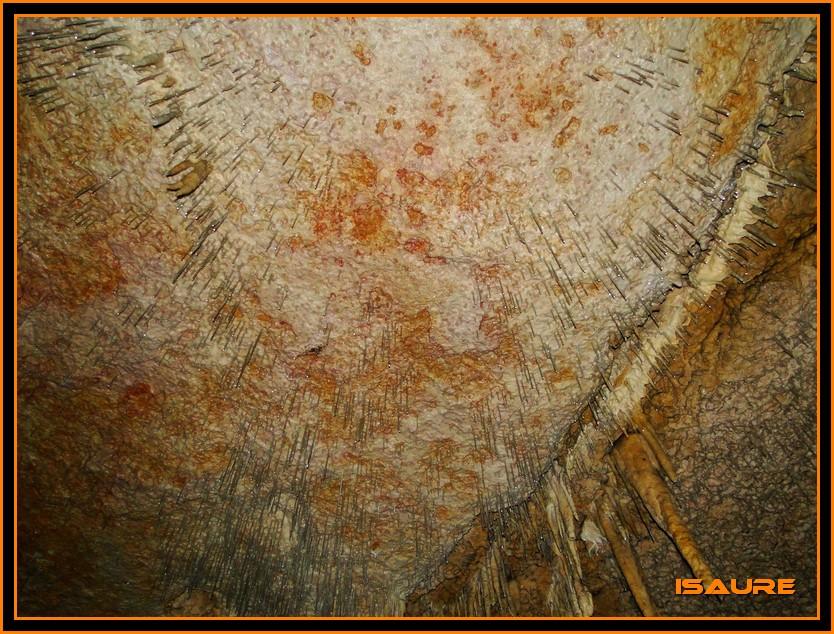 Bosque de Artea y Cueva de los Cristinos (Urbasa) DSC02673