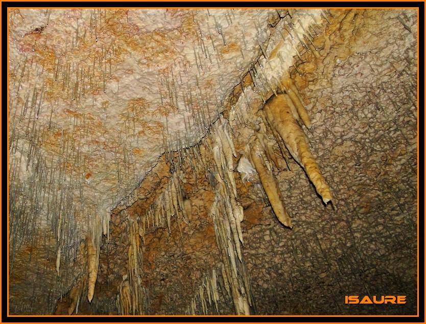 Bosque de Artea y Cueva de los Cristinos (Urbasa) DSC02674