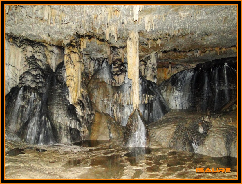Bosque de Artea y Cueva de los Cristinos (Urbasa) DSC02683