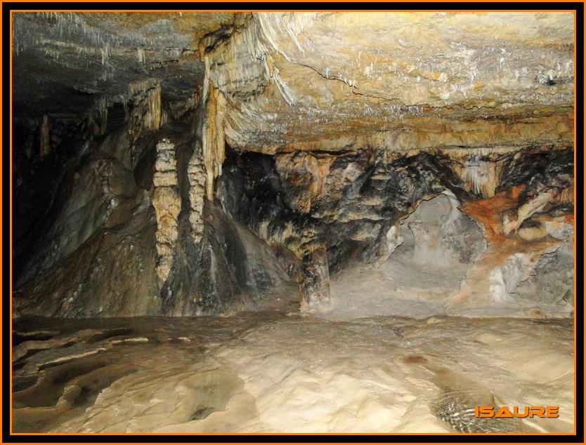 Bosque de Artea y Cueva de los Cristinos (Urbasa) DSC02691