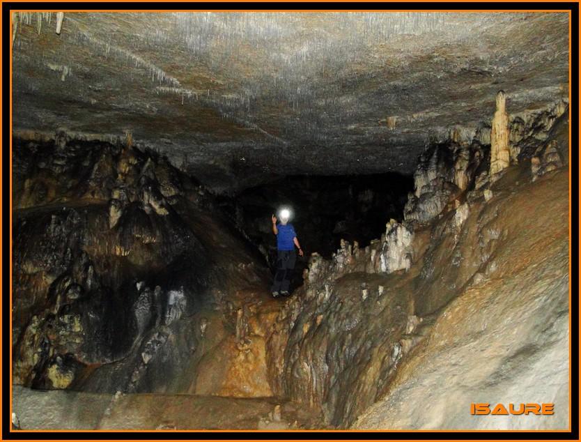 Bosque de Artea y Cueva de los Cristinos (Urbasa) DSC02699