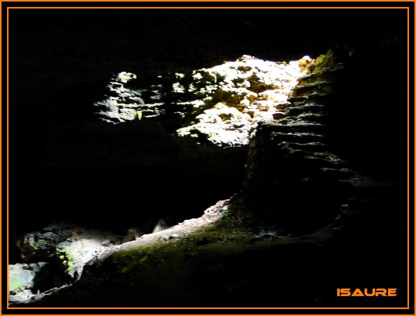 Bosque de Artea y Cueva de los Cristinos (Urbasa) DSC02703
