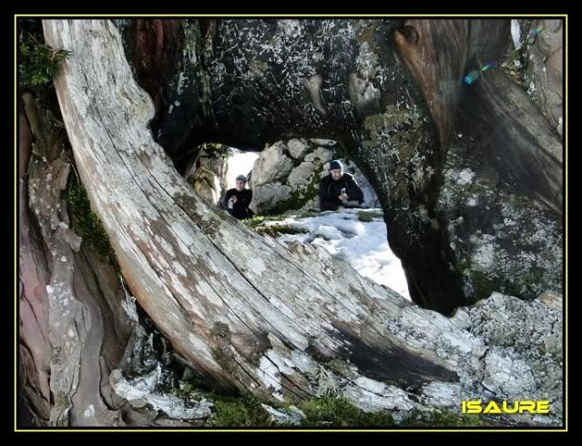 Braña de los Tejos desde Lebeña DSC08709