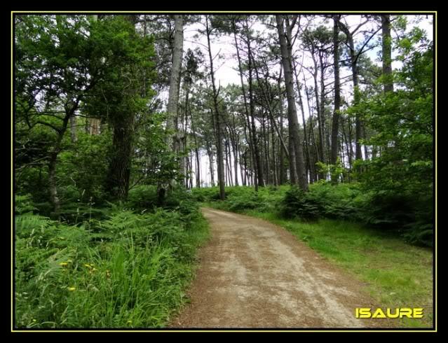 Camino de Santiago por el Norte DSC00746