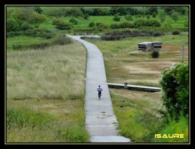 Camino de Santiago por el Norte DSC00761