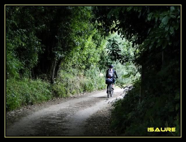 Camino de Santiago por el Norte DSC00865