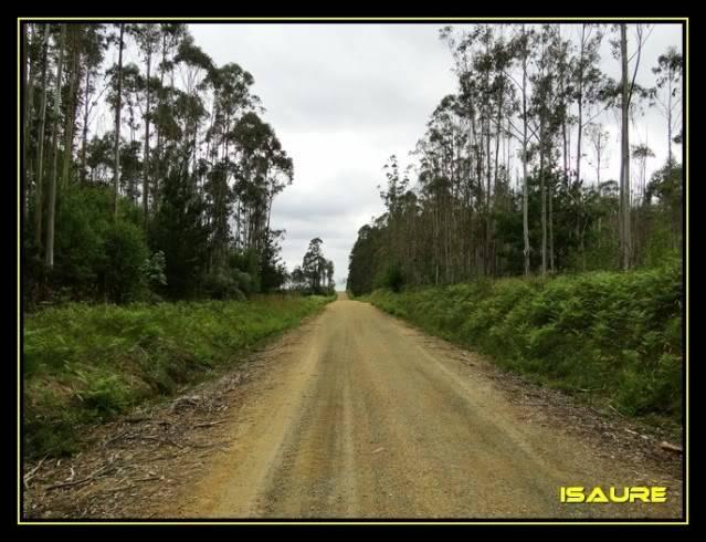 Camino de Santiago por el Norte DSC00866