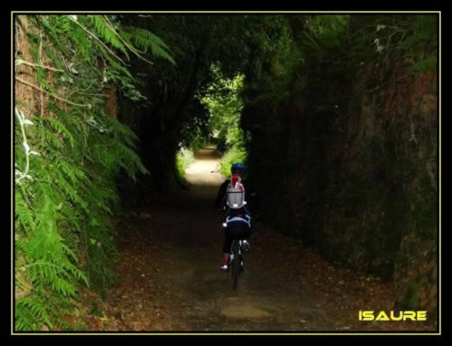 Camino de Santiago por el Norte DSC00870
