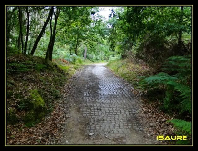 Camino de Santiago por el Norte DSC00923
