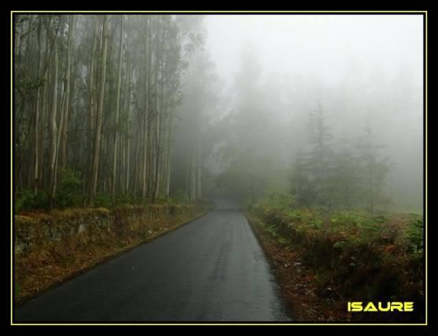 Camino de Santiago por el Norte DSC00928