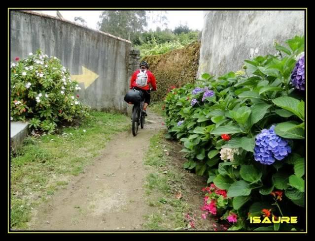 Camino de Santiago por el Norte DSC00957