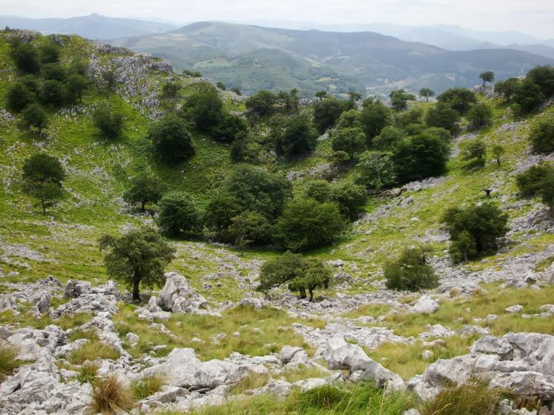 Monte Candina 489m. y Salpico 486m. desde Sonabia CANDINA117