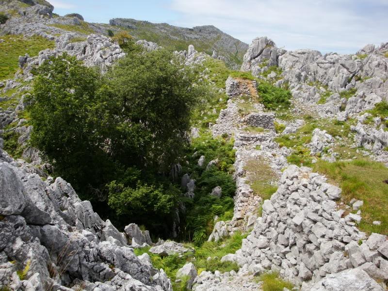 Monte Candina 489m. y Salpico 486m. desde Sonabia CANDINA122