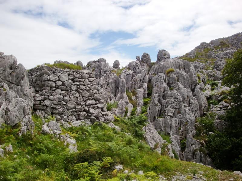 Monte Candina 489m. y Salpico 486m. desde Sonabia CANDINA124