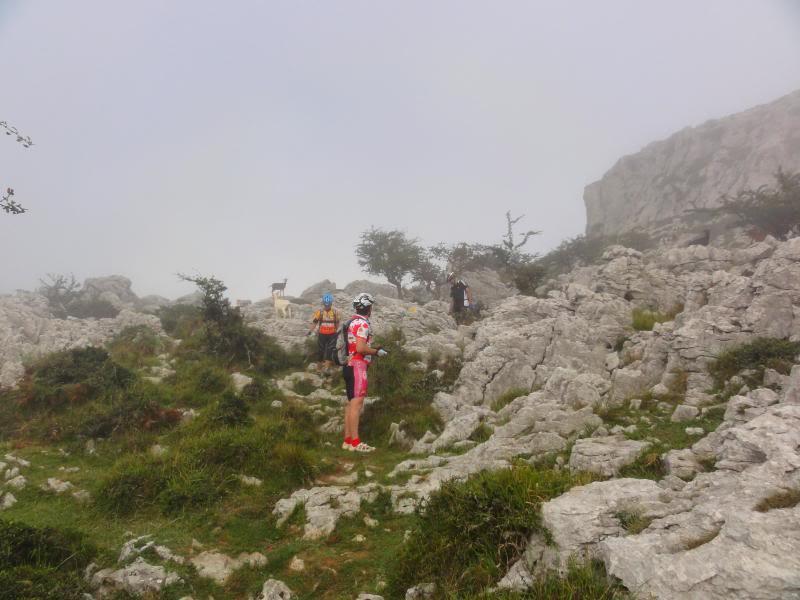 Pico Cerredo 634m. Ventoso 731m. desde Castro Urdiales DSC00903