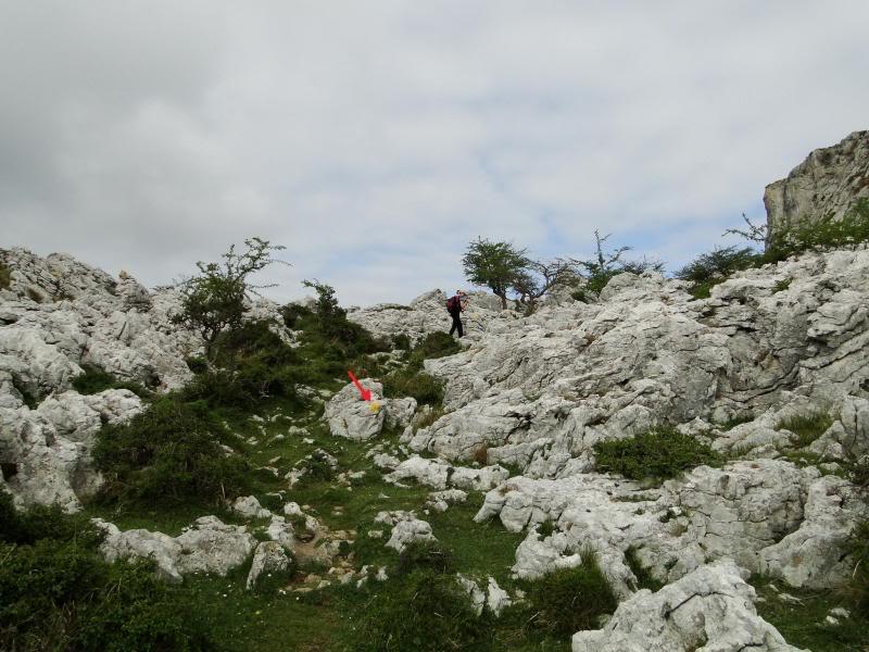 Pico Cerredo 643m. desde Cerdigo DSC00734