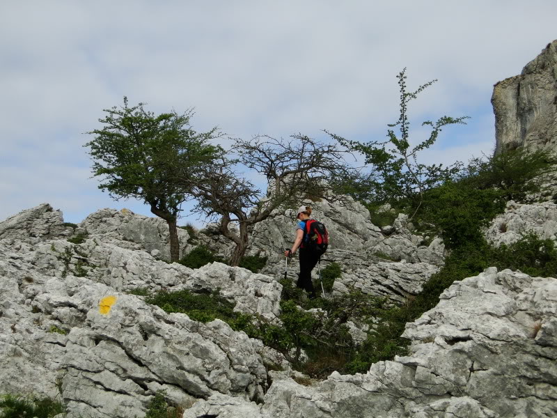 Pico Cerredo 643m. desde Cerdigo DSC00735