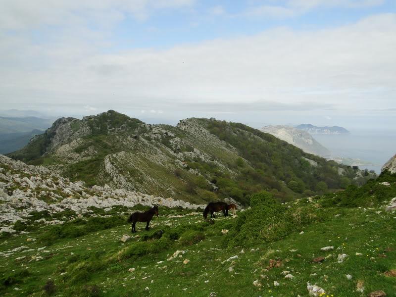 Pico Cerredo 643m. desde Cerdigo DSC00739