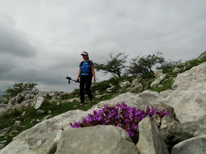 Pico Cerredo 643m. desde Cerdigo DSC00769