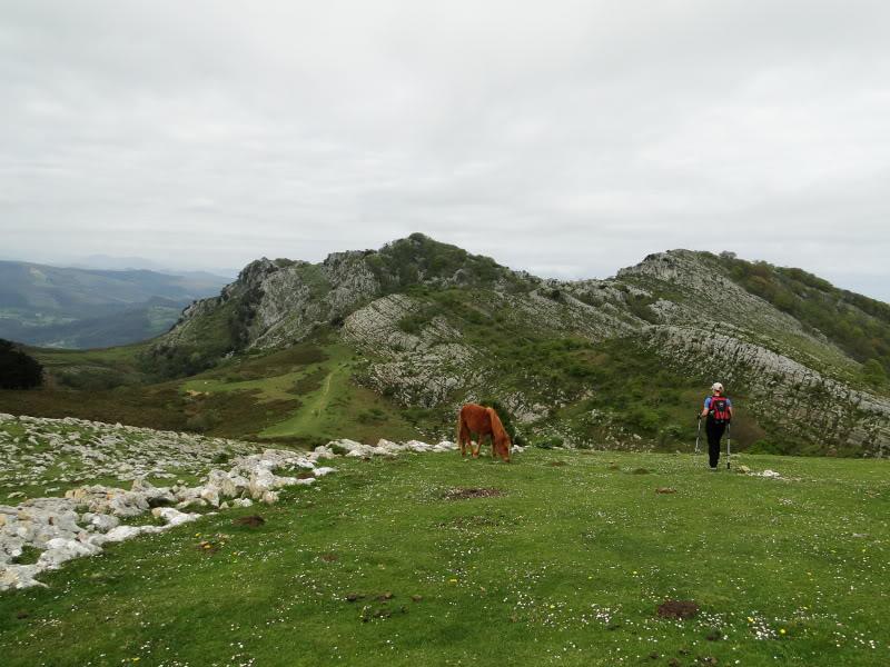 Pico Cerredo 643m. desde Cerdigo DSC00773