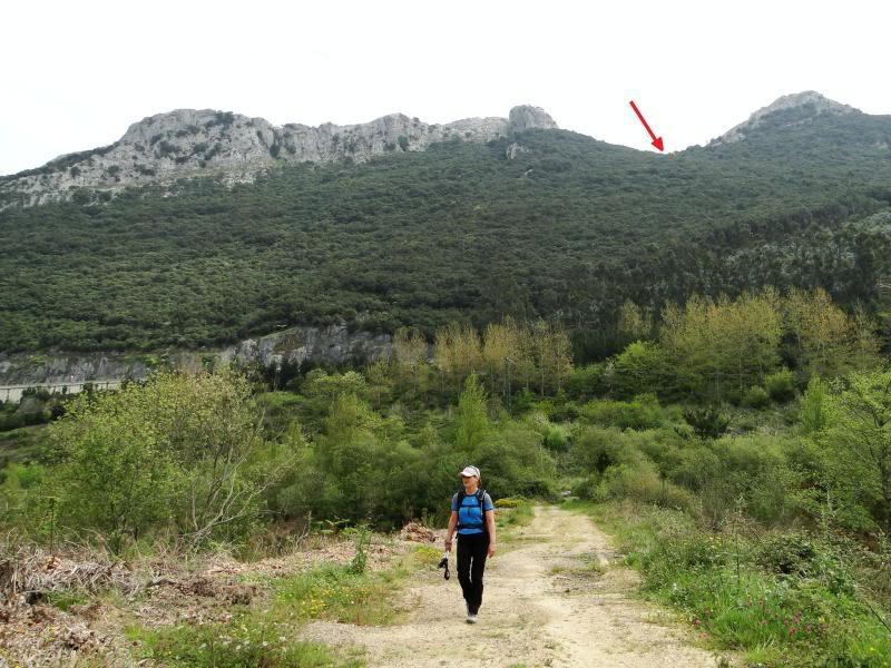 Pico Cerredo 643m. desde Cerdigo DSC00807