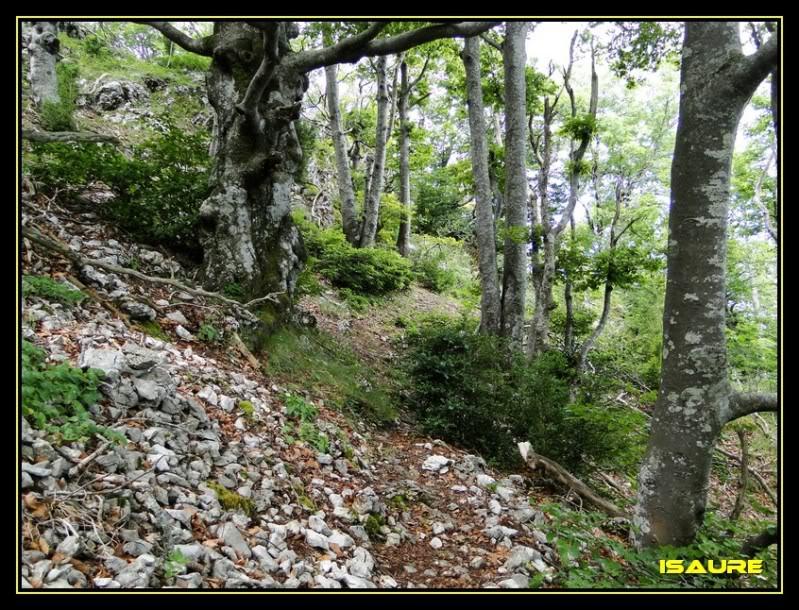 Cresterio San Tirso-Palomares DSC07521