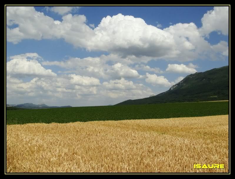 Cresterio San Tirso-Palomares DSC07624