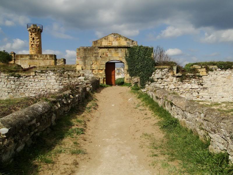Getxo-Plentzia (Acantilados de la Galea) DSC09162