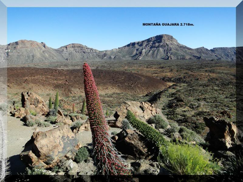 Montaña Guajara 2.718m. (Tenerife) 1