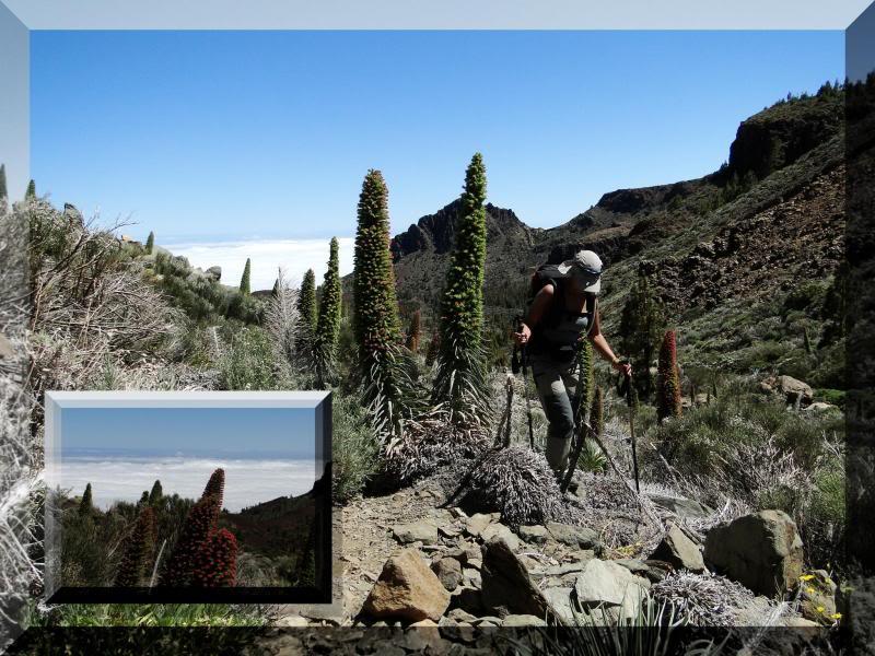 Montaña Guajara 2.718m. (Tenerife) 107