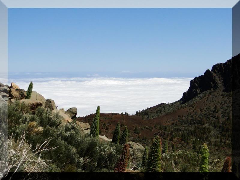 Montaña Guajara 2.718m. (Tenerife) 108