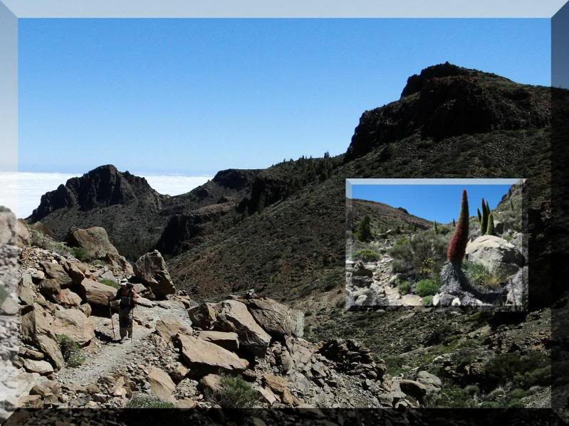 Montaña Guajara 2.718m. (Tenerife) 110