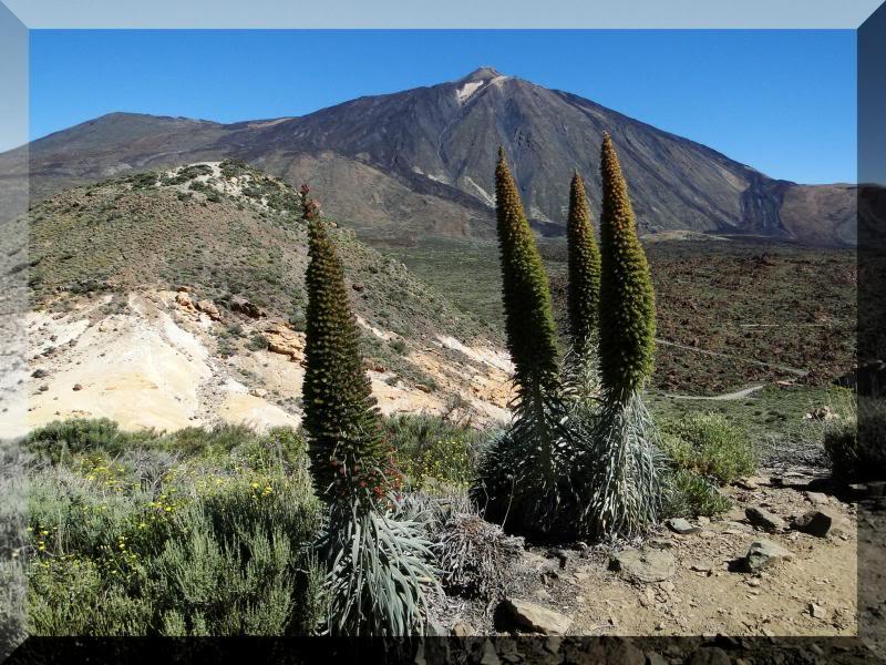 Montaña Guajara 2.718m. (Tenerife) 15