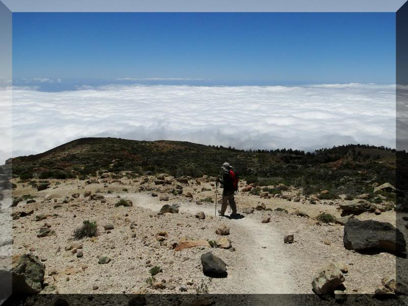 Montaña Guajara 2.718m. (Tenerife) 50