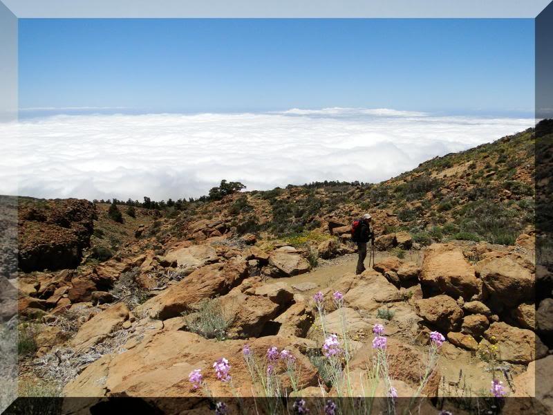 Montaña Guajara 2.718m. (Tenerife) 57