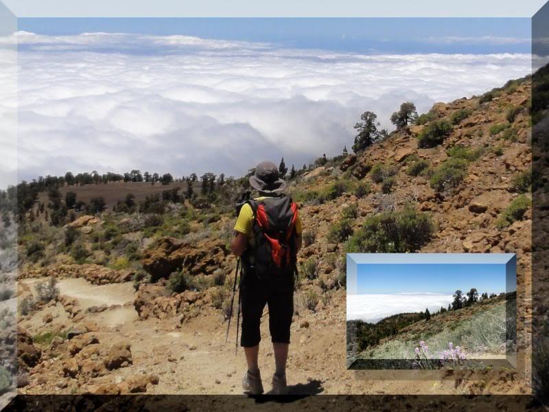 Montaña Guajara 2.718m. (Tenerife) 58