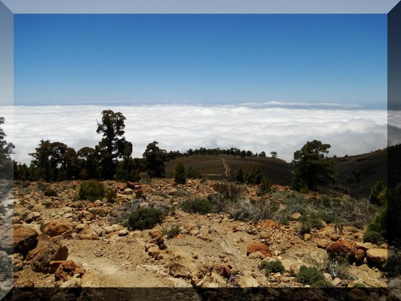 Montaña Guajara 2.718m. (Tenerife) 60