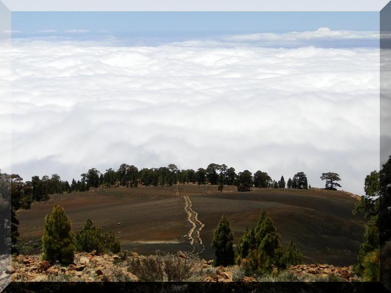 Montaña Guajara 2.718m. (Tenerife) 62