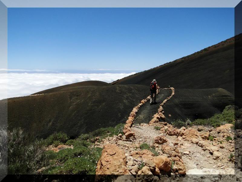 Montaña Guajara 2.718m. (Tenerife) 63