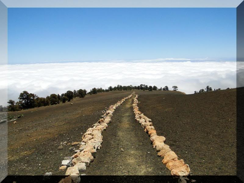 Montaña Guajara 2.718m. (Tenerife) 65