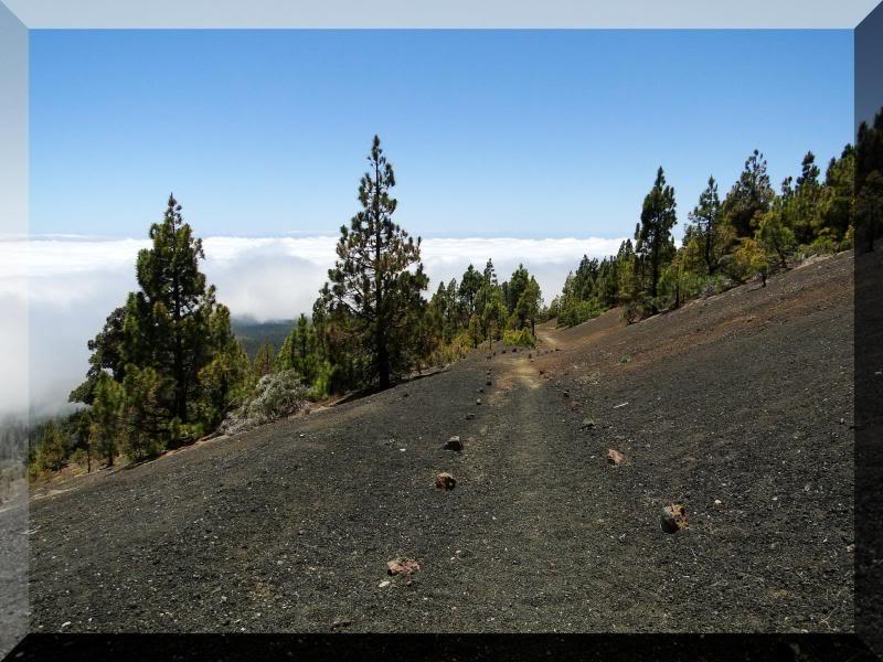 Montaña Guajara 2.718m. (Tenerife) 69