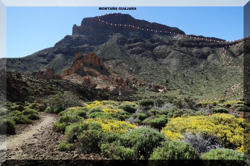 Montaña Guajara 2.718m. (Tenerife) 8