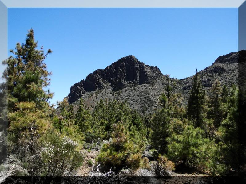 Montaña Guajara 2.718m. (Tenerife) 87