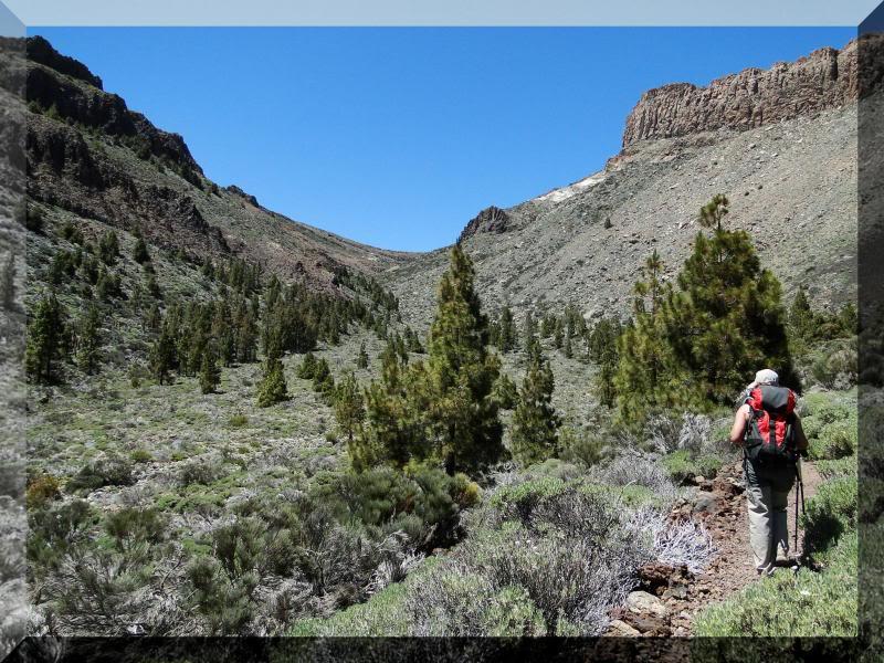 Montaña Guajara 2.718m. (Tenerife) 89