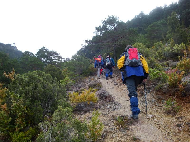 Pico Humión 1.434m. y Pico Flor  1.340m. HUMIN011