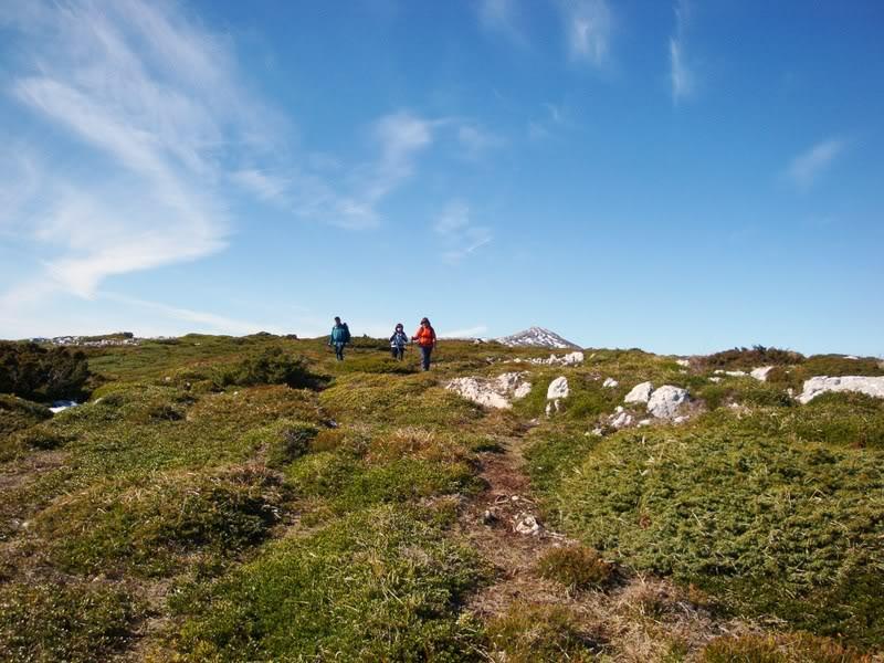 Pico Humión 1.434m. y Pico Flor  1.340m. HUMIN133