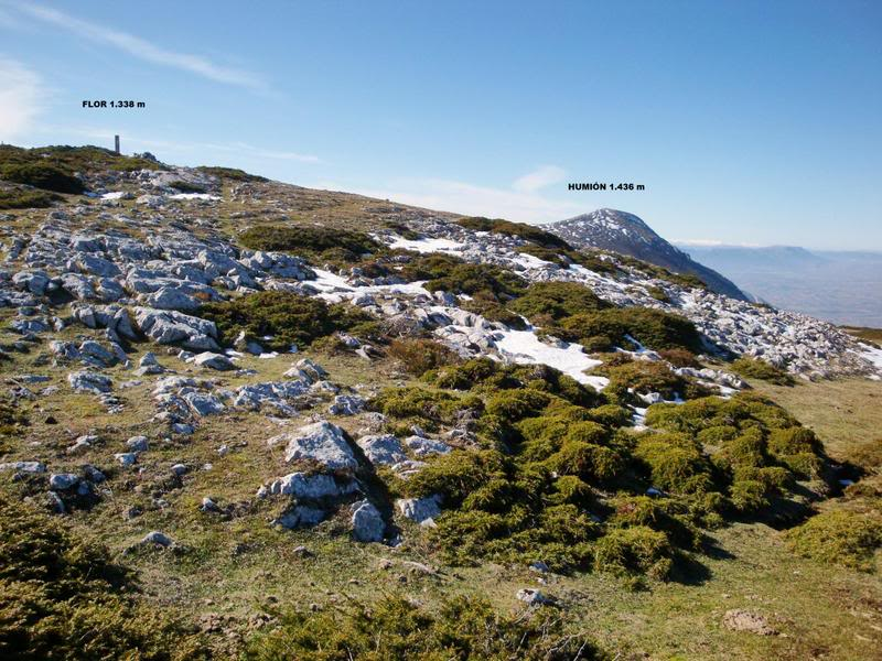 Pico Humión 1.434m. y Pico Flor  1.340m. HUMIN163